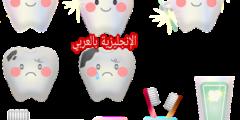 مفردات الأسنان بالإنجليزي