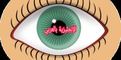 مفردات العين بالإنجليزية والعربية