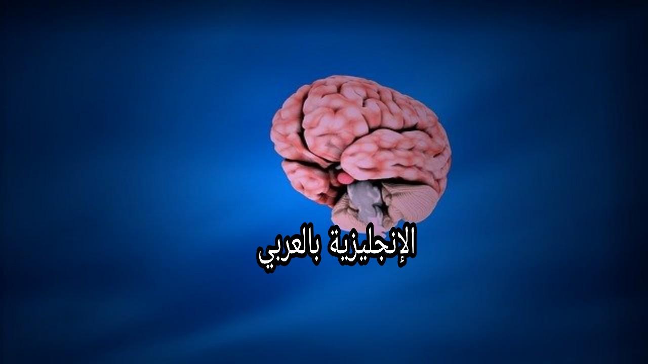 الجهاز العصبي بالإنجليزي والعربي