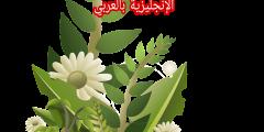 مكونات النبات والشجر بالإنجليزية